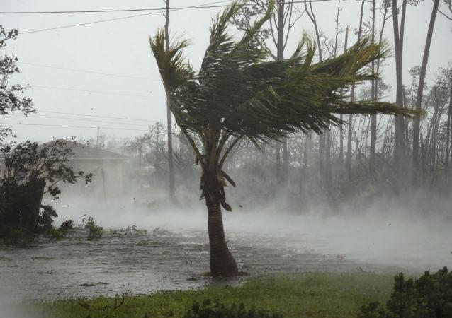 媒体:巴哈马遭飓风多里安袭击遇难人数升至43人
