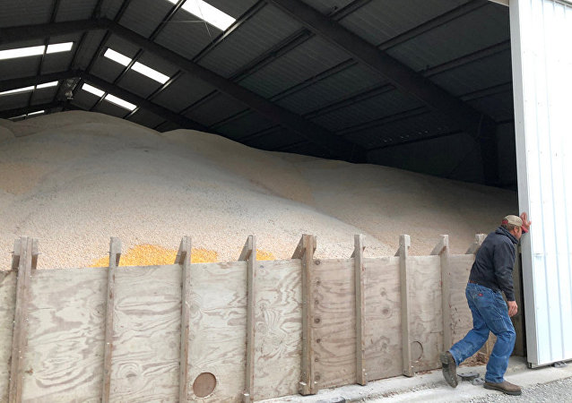 中國農業農村部副部長:增加自美農產品進口不會對中國國內農業產生衝擊