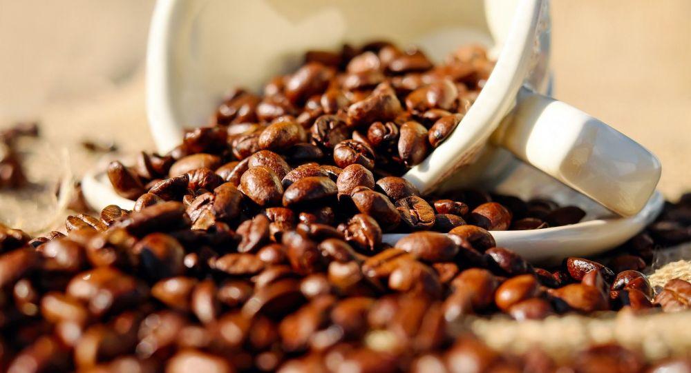 科学家指出借助咖啡延长寿命的方法