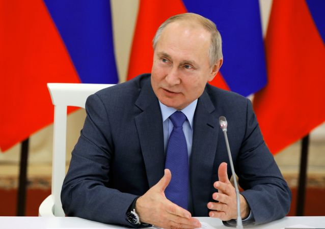 普京:近期必须增强海军力量