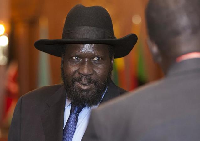 南苏丹总统与反对派领导人就组建政府达成一致