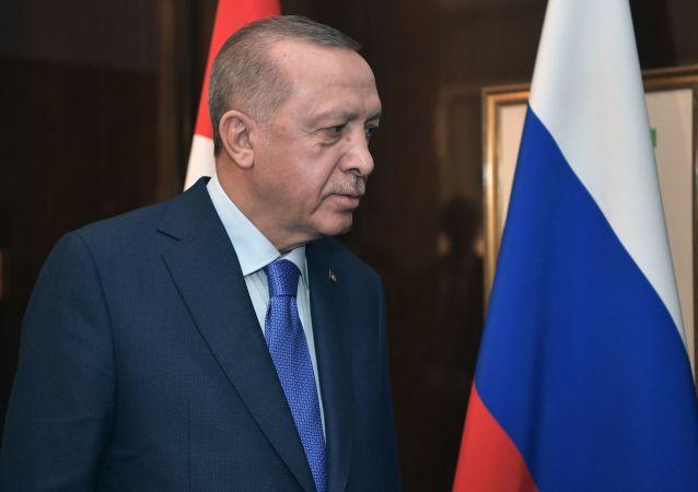 土耳其總統稱他與普京討論了俄可能參與在土再建造兩座核電站的議題