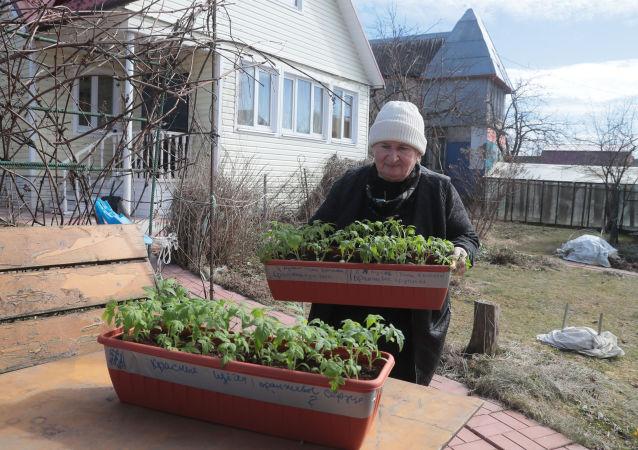 2021年俄罗斯人对速卖通园艺商品的需求翻倍