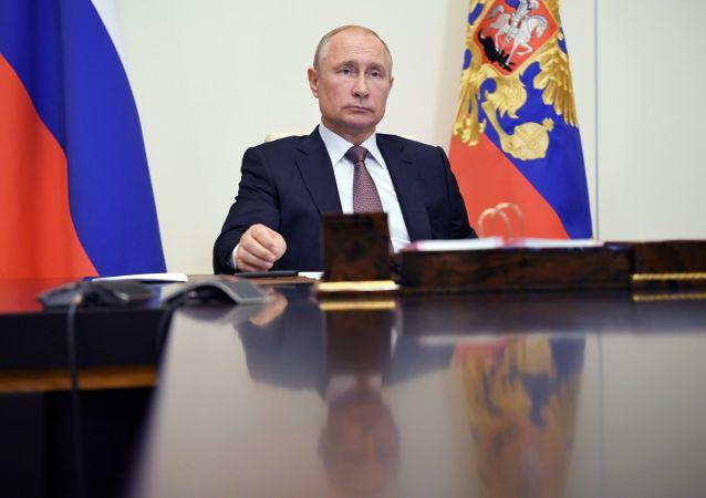 普京提议通过不涉天然气条款的欧亚经济联盟发展战略