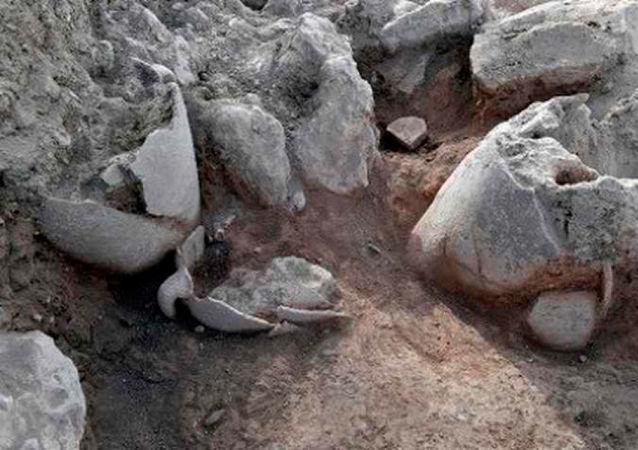 河南发现带五千年前发酵酒残留的器皿