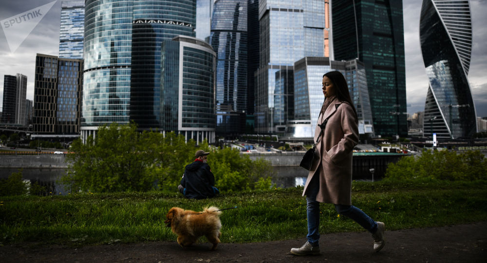 民调:与高薪相比俄罗斯人更喜欢远程工作
