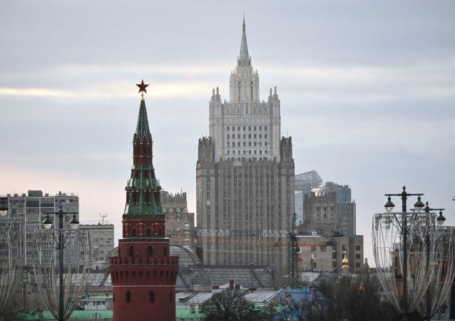 普京與魯哈尼討論合作抗疫事宜