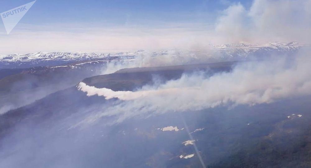 堪察加半岛超过100公顷的森林起火